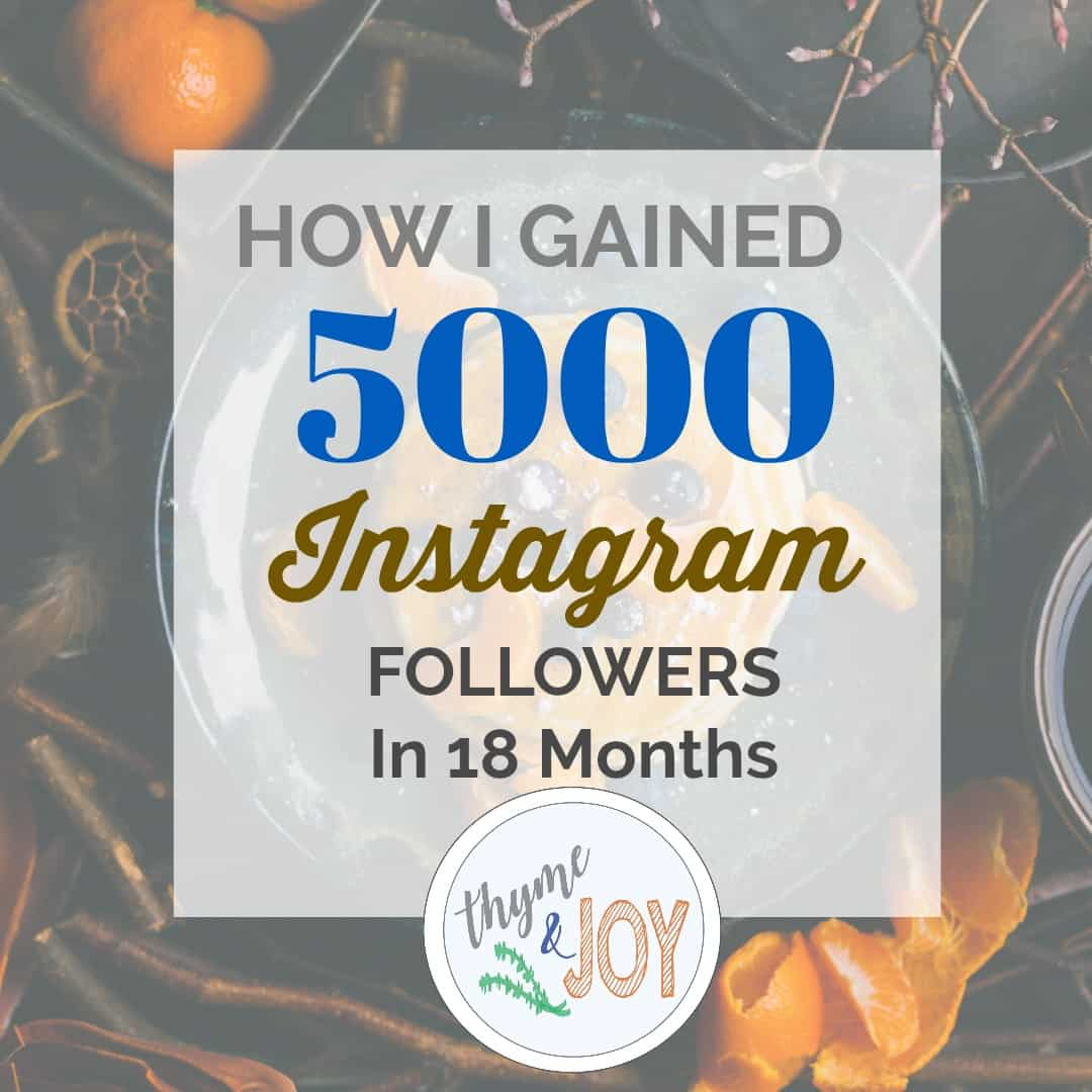 Tips on how to gain instagram followers - Thyme + JOY